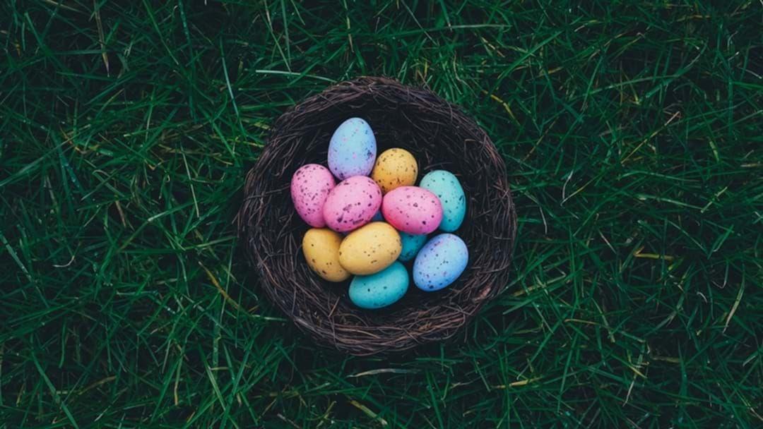 Article heading image for Don't Miss The Best Border Easter Egg Hunt!